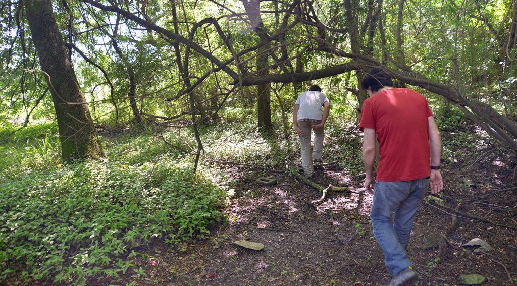 Comenzaron las visitas guiadas a la Reserva Ecológica Ciudad Universitaria.